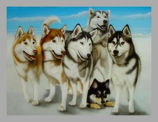Picture of airbrushed Husky painting, copyright by Hans Kreuzen