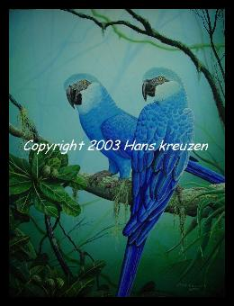 Picture of brush painted Spixs Macaws, copyright by Hans Kreuzen
