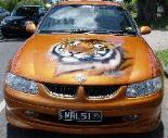 Airbrushed Tiger on SS Commodore